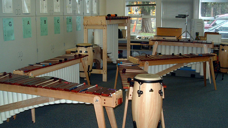 The unique qualities of Rosebush Marimbas make it so that any student can learn to play music successfully.